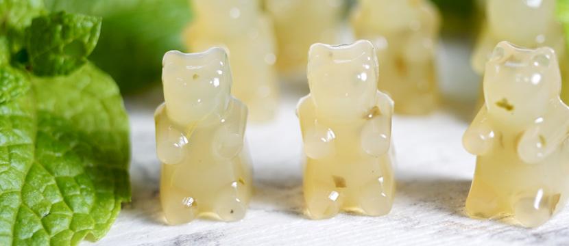 Mojito-Gummibären