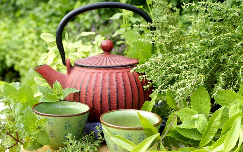 Teekanne für Minztee