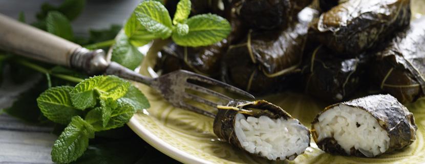 Weinblätter mit türkischer Minze