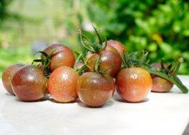 Kirschtomate 'Black Cherry' (Saatgut)