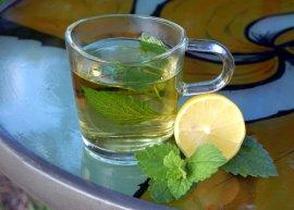 Zitronenmelisse (Saatgut)