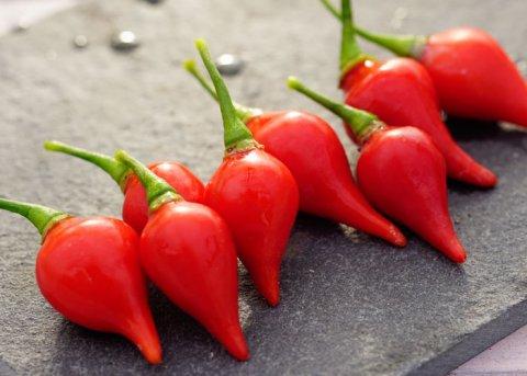 Chili Biquinho Vermelho (Saatgut)