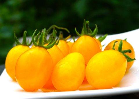Datteltomate, gelb (Saatgut)