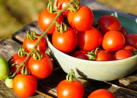 Tomate 'Tommy Toe' (Saatgut)